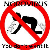 norovirus-2(1)