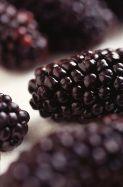 Black_Butte_blackberry
