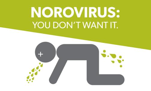 norovirus-1080x655
